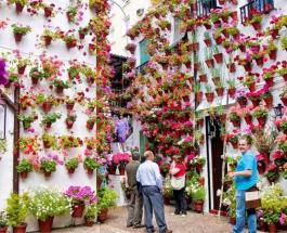 Анфестирия на Кипре: история и традиции праздника цветов