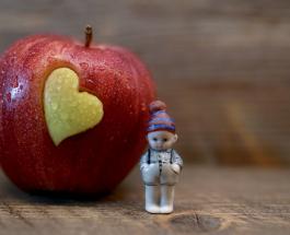 Как сформировать здоровые привычки питания ребенка