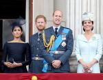 Букингемский дворец кишит мышами: королева временно покинула резиденцию