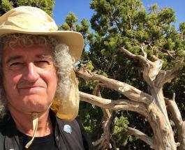 Детское фото Фредди Меркьюри: гитарист группы Queen обнародовал архивное фото артиста