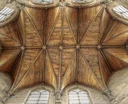 Деревянные дома – лучшее жилье для человека: британский архитектор выдвинул новую теорию