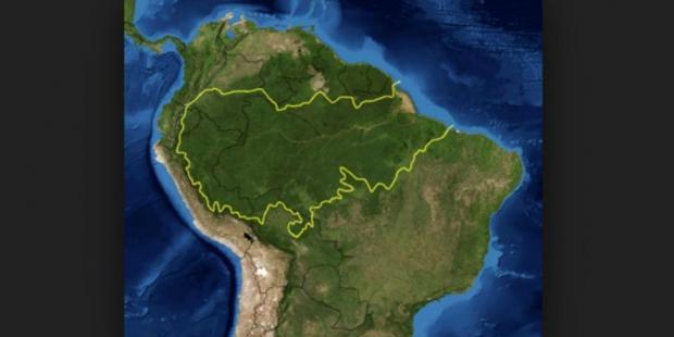 джунгли амазонки