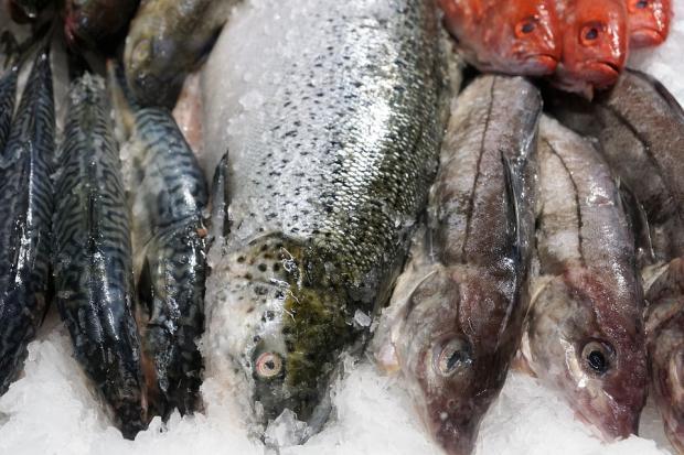 Рыбий жир при ревматоидном артрите