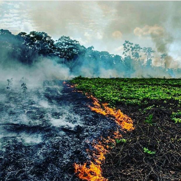 Пожар в Амазонке