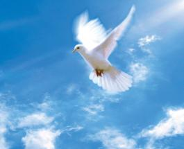 21 сентября в истории: Международный день мира и день рождения Стивена Кинга