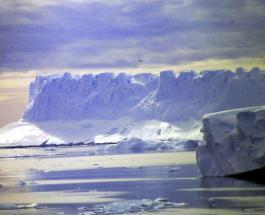 От ледника Эймери в Антарктиде откололся самый большой айсберг за последние 50 лет
