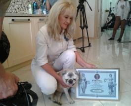 Умерла самая старая собака Украины: Луше было 19 лет и 6 месяцев