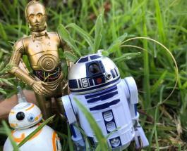 """Умирающий фанат """"Звездных войн"""" сможет увидеть новый фильм раньше остальных зрителей"""