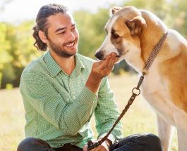 Ученые доказали: наказание собак негативно влияет на их здоровье
