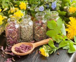 Народная медицина: 22 простых совета при проблемах со здоровьем