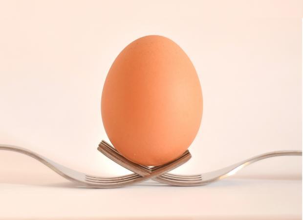 Можно ли есть яйца каждый день мужчине