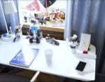 Письменный стол в комнате Платона