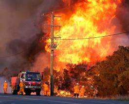 В Австралии после самого жаркого дня в истории объявлено чрезвычайное положение