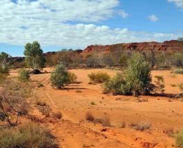 17 декабря в Австралии был самый жаркий день в истории