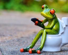 Умный туалет сможет диагностировать болезни до появления первых симптомов