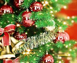 Опасная сторона Нового года: вред от елки, игрушек и других атрибутов праздника
