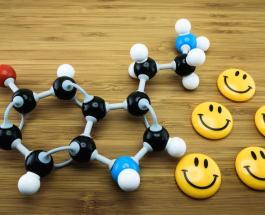 Самые известные гормоны счастья и их влияние на организм человека