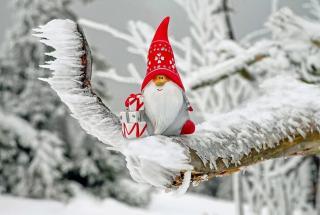 Рождественские конфузы: фото демонстрирующие праздничное невезение