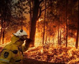 Фото До и После: как пожары в Австралии уничтожили районы и достопримечательности