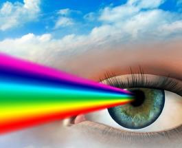 Как видит дальтоник: характеристика и способы понять наличие нарушения цветовых рецепторов