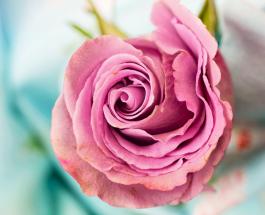 Любовный гороскоп: как выражают свои чувства разные знаки Зодиака