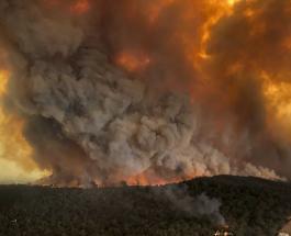 НАСА: дым от пожаров в Австралии распространится по всему миру
