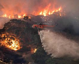 Очевидцы: Новый год на востоке Австралии напоминал апокалипсис