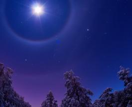 Рака поддержат друзья, а Львы захотят романтики: общий гороскоп на февраль 2020 года