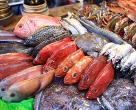 Какая рыба самая полезная: 4 вида, которые должны быть в рационе каждого человека