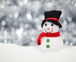 В Австрии слепили самого высокого снеговика в мире который вошел в Книгу рекордов Гиннесса