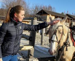 На Киевщине пройдет конное шоу с мастер-классами