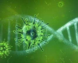 Китайский коронавирус поразил все континенты, кроме Антарктиды: тревожная статистика
