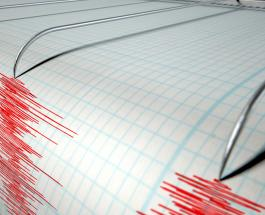 Восемь человек погибли в результате сильного землетрясения в Турции