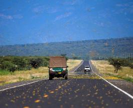 Огромный рой саранчи добрался до Южного Судана: власти страны опасаются обострения кризиса