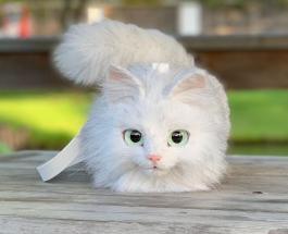Сумки в виде кошек: необычные работы дизайнера из Японии