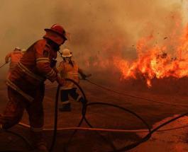 Пожары в Австралии: огонь добрался до столицы страны