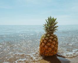 Праздники 12 марта: День Солнца-Земли и Всемирный день ананаса