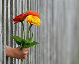 Какие цветы дарить женщинам: значение и тайный смысл букетов