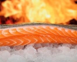 Вкусно и полезно: 6 причин включить лосось в ежедневный рацион