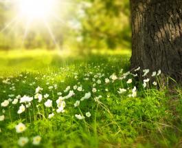 Весеннее равноденствие в мире: мифы и легенды, традиции и суеверия