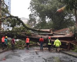 Разрушительный циклон Гарольд ударил по Фиджи: скорость ветра достигает 240 км в час