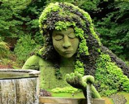 Топ-10 самых красивых и известных ботанических садов в мире