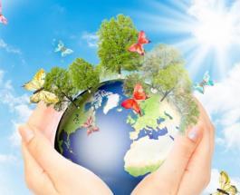 Какой сегодня праздник: 22 апреля отмечается Международный день Матери-Земли