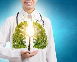 Продукты питания, которые поддерживают здоровье лёгких
