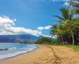 Власти Гавайев отправляют иностранных туристов домой за счет средств, выделенных из госбюджета