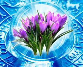 Тельцов ждет счастье в любви и проблемы на работе: общий гороскоп на май 2020 для всех знаков Зодиака