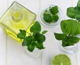 Эфирное масло орегано: что это такое и чем оно полезно для здоровья организма и красоты тела