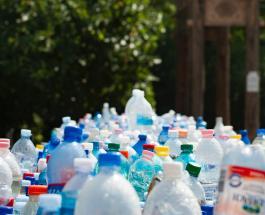 Голландская компания разрабатывает пластиковые бутылки на растительной основе