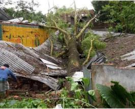 В Индии и Бангладеш оценили ущерб после циклона Амфан: сумма исчисляется в миллиардах долларов