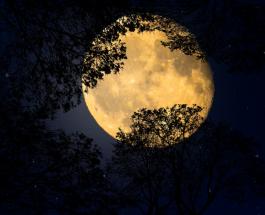 Лунное затмение в июне: 4 знака Зодиака наиболее уязвимы перед астрологическим событием